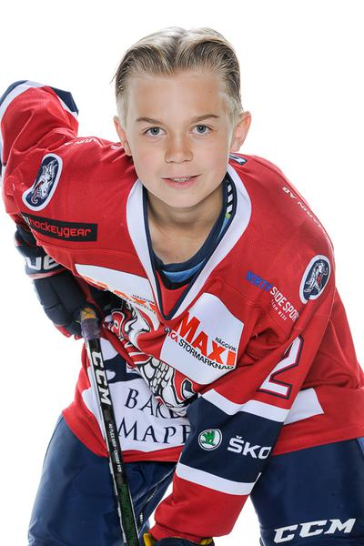 Md team 08 simon edlund 734090