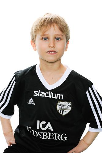 Md p09 viby ludvig engvall 471287